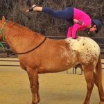 Yoga for Equestrian